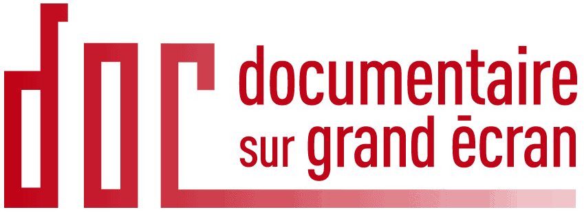 dsge logo_red2