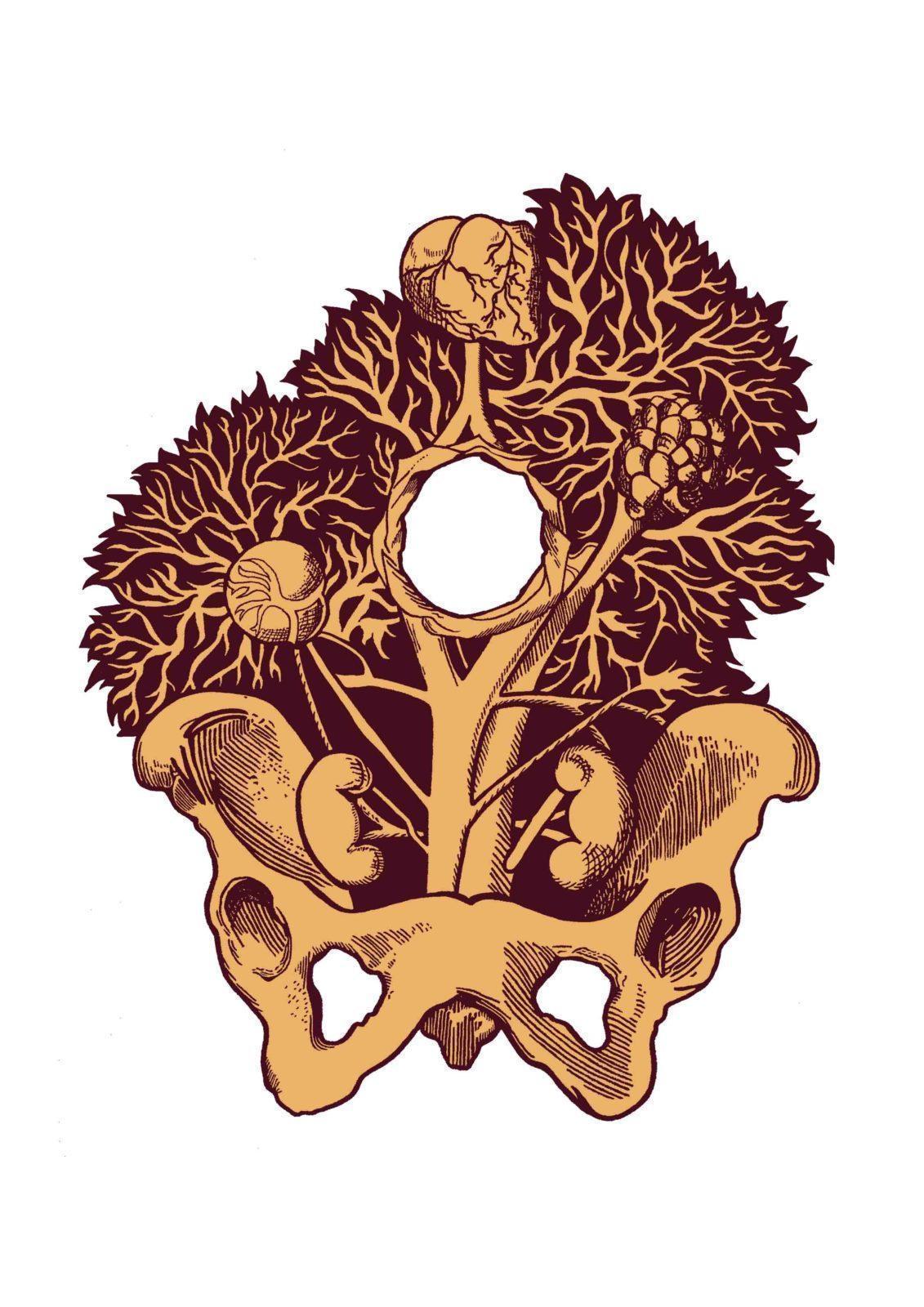 Anatomie du labo